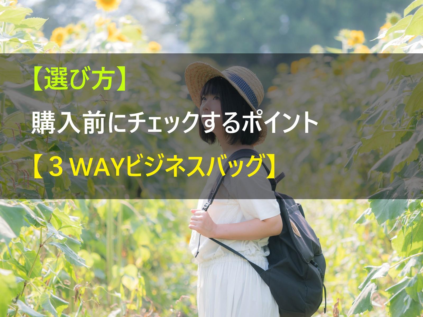 3way_business_bag